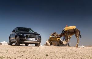 Le nouvel Audi Q5 est sur les routes